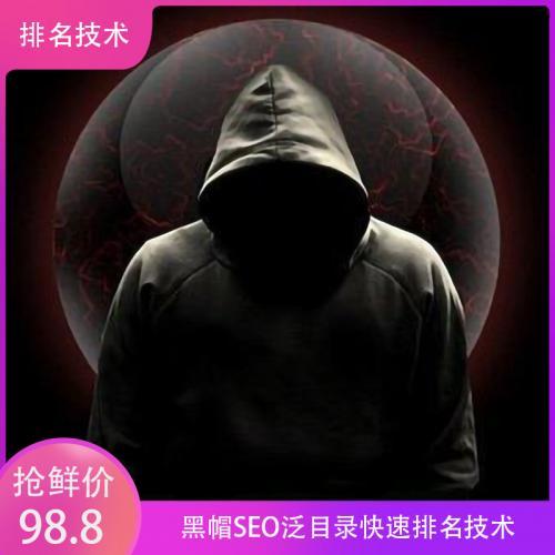 SEO排名课程:黑帽SEO泛目录快速排名技术视频教程(完整版)百度云资源下载