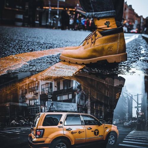 美国纽约摄影教程珍贵