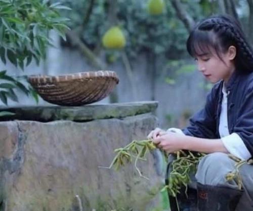 李子柒美食视频素材