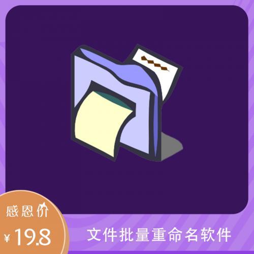 文件批量重命名工具ReName v7.2激活码注册版