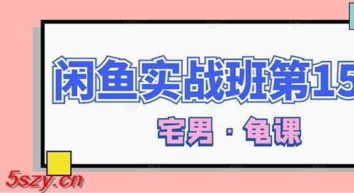 龟课·闲鱼无货源电商课程第15期,一个月收益几万不等(附软件)【33节视频-无水印】