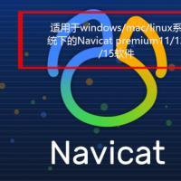 navicat破解版本(naticat11/naticat12/naticat15版本)